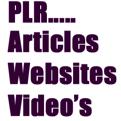 adult private label rights Adult Plr Services